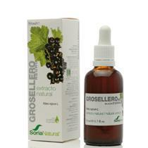 EXTRACTO GROSELLERO NEGRO 50ML SORIA NATURAL